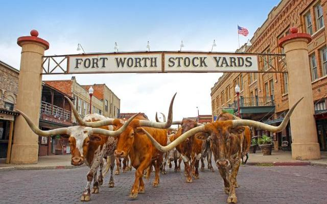 40 Best Things to Do in Fort Worth in Texas, USA
