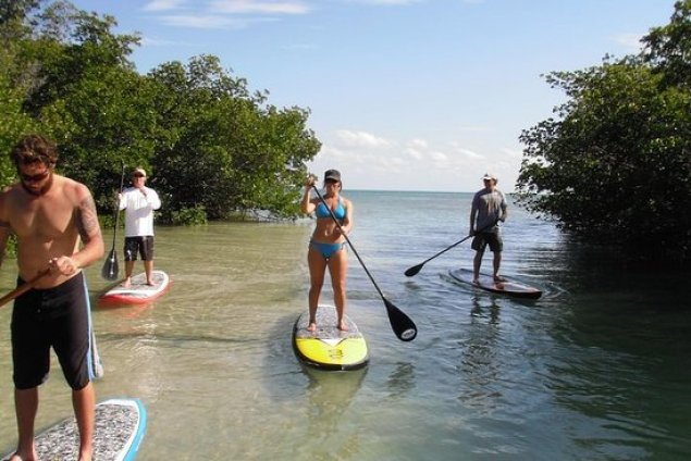 Things to do in Key West Lazy Dog Adventures