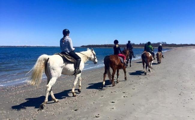 Horseback Riding Newport RI