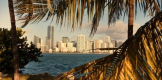 Best & Fun Things to Do in Miami, Florida