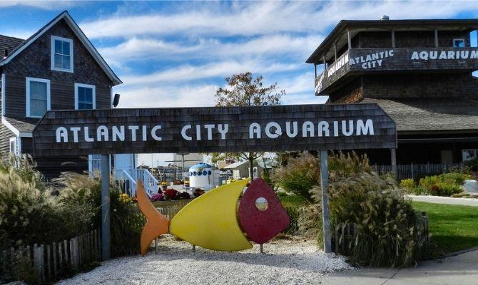 Atlantic City Aquarium NJ