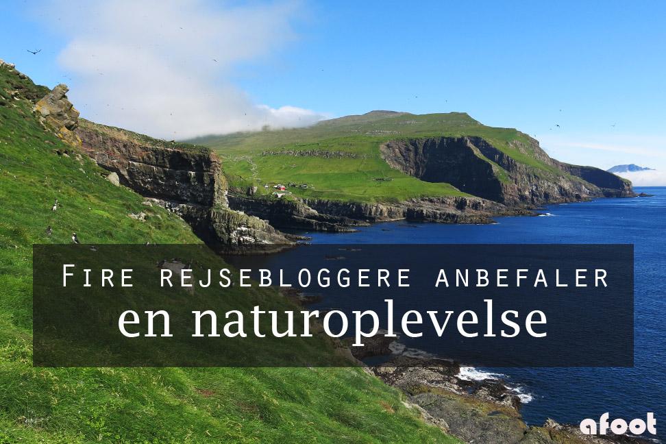 Fire rejsebloggere anbefaler en naturoplevelse