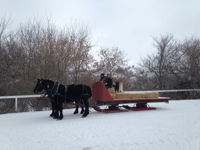 Sleigh Ride at Beaver Creek Ranch