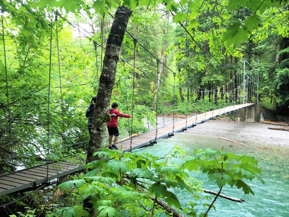 View of Suspension Bridge on Ohanapecosh river at Grove of Patriarch Trails  at Mount Rainier National Park.Easy Hikes and Road side attractions at Mount Rainier.