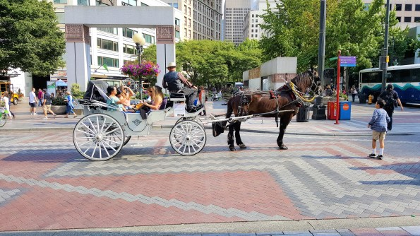 Horse Carriage at West Lake Bus stop, Seattle Downtown