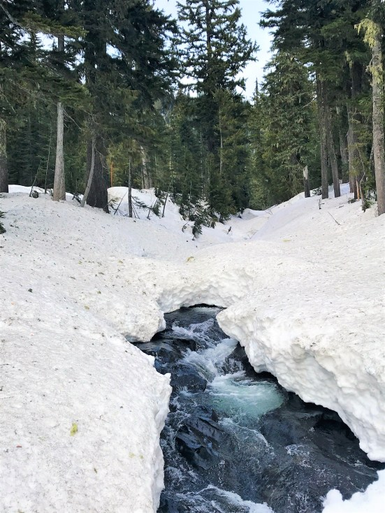 Snow covered Narada Falls in Winter and spring.