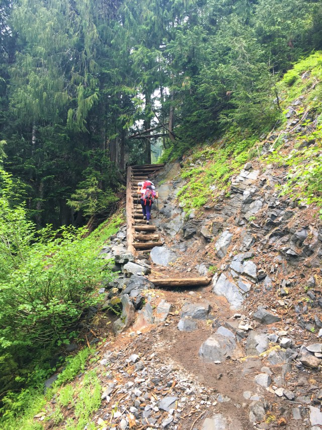 Crib Ladder on Comet Falls trail Mount Rainier National Park