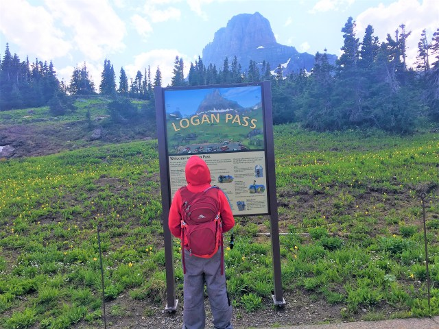 Logan Pass Signboard Glacier National Park