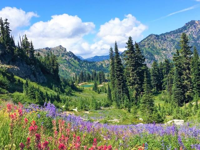Hike to Naches Peak Loop Mount Rainier National Park