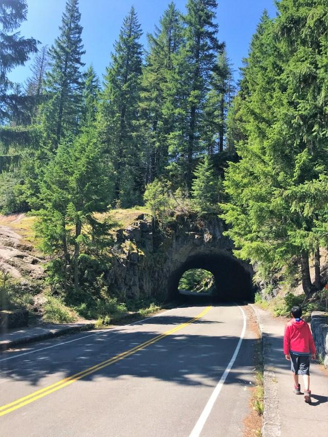 Stevens Canyon Road Tunnel Mount Rainier National Park