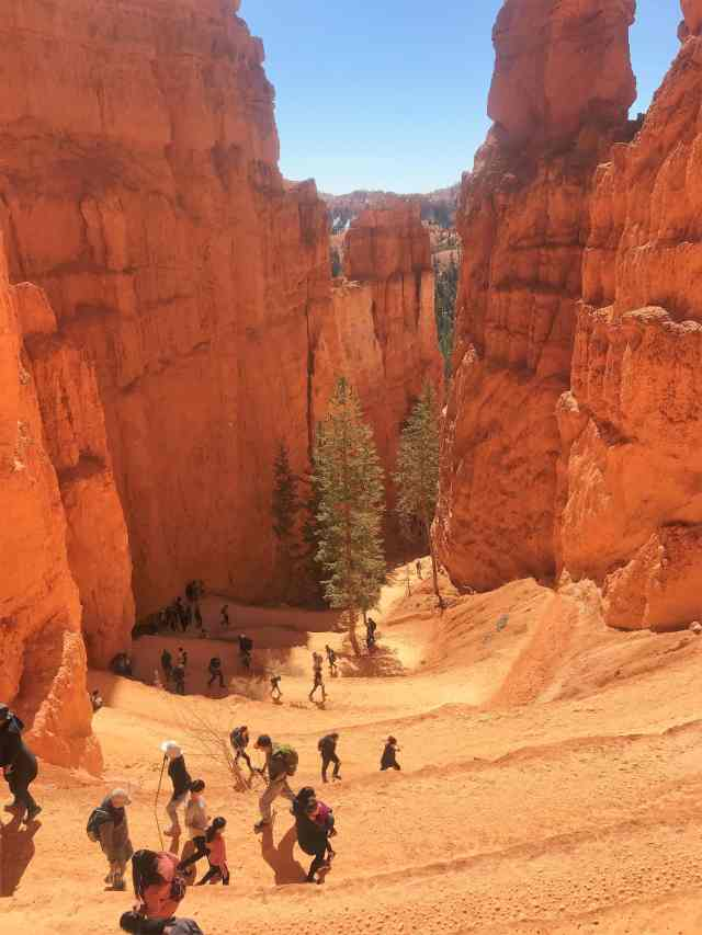 Switchback on Navajo Loop Trail. Best Hikes in Bryce Canyon National Park