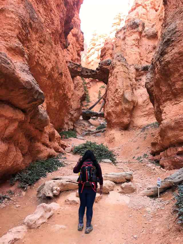 Two Bridges on Navajo Loop Trail. Best Hikes in Bryce Canyon National Park