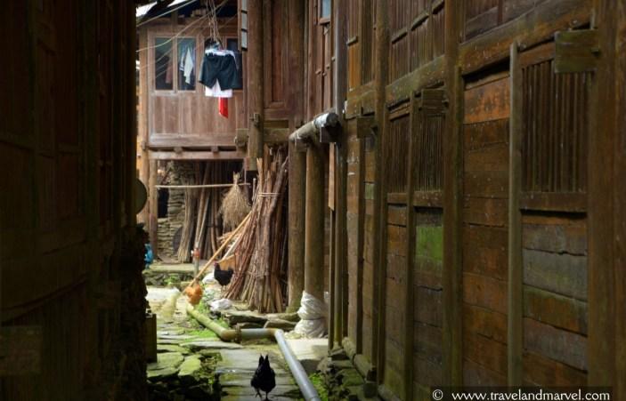 Risaie di Longsheng a Guilin