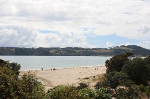 cooks-beach-coromandel NZ