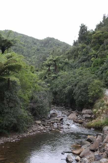 coromandel-nouvelle-zelande