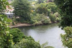waikato-river-hamilton