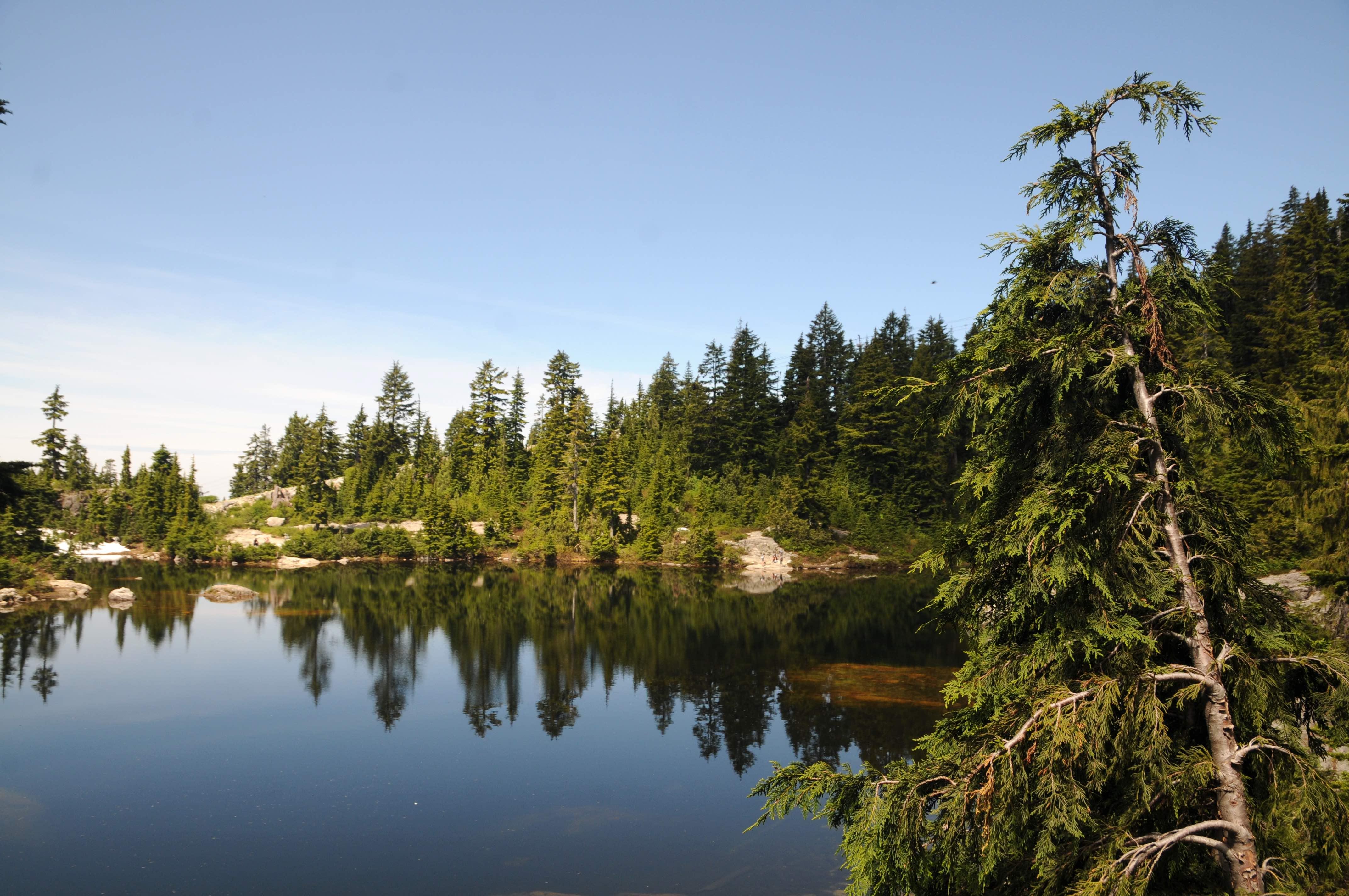 Mystery Lake / Mount Seymour