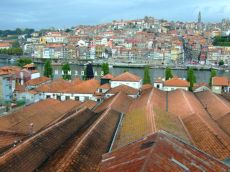 Cramele din Vila Nova de Gaia