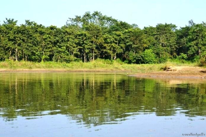 Jungla din Chitwan