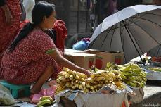 De asemenea, fructele se vând la piaţă ...
