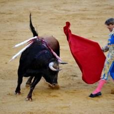 Valencia - Fuego, toros y pasion