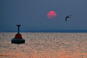 Asfinţit pe lacul Goloviţa