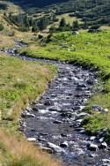 Pârâu pe Valea Pelegii