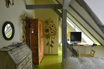 Camera floarea soarelui