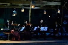 Concert în mijlocul pădurii, la Paltin
