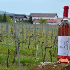 Incursiune de primăvară în vinăriile din Dealu Mare