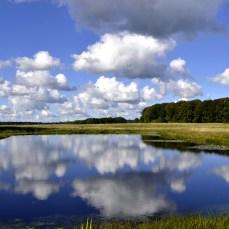 Jægersborg Dyrehave ...