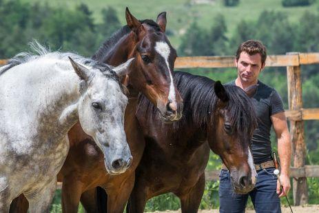 Miron Bococi, vrăjitorul de cai
