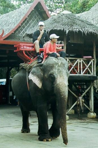 Călare pe elefant