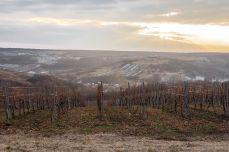 Podgoriile Drăgășanilor