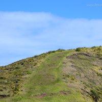 Explore Cape Reinga – Sacred Place of the Far North