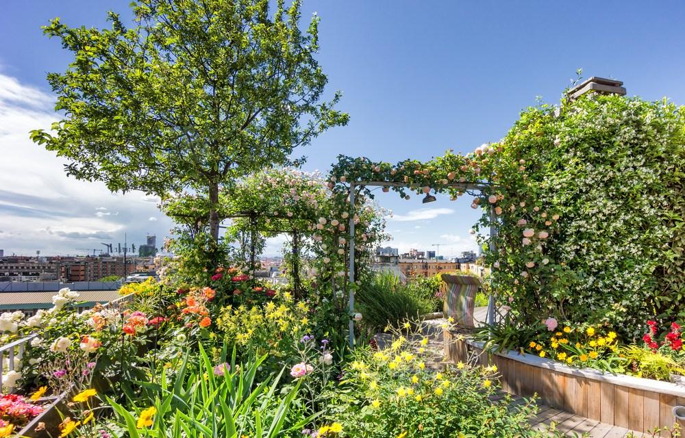 Les avantages des toits verts et jardins sur les toits