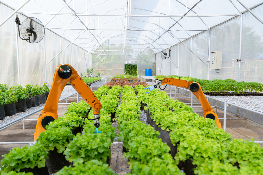 robot agriculteur