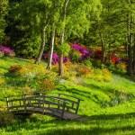 Projet de jardinage : par où commencer ?