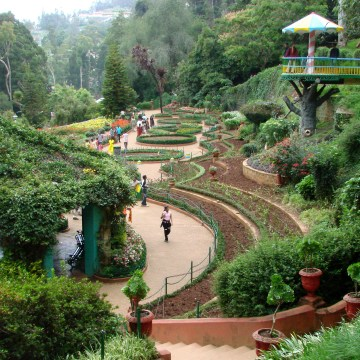 Ooty-Botanical-Gardens-Feature