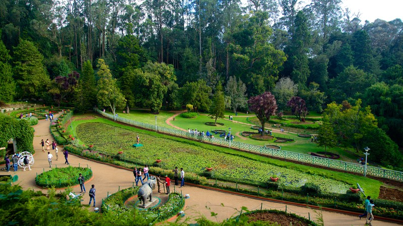 Ooty-Botanical-Gardens-view-India