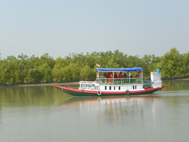 sunderbans-mangroves-safari-india
