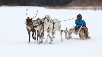 Nenet reindeer herders - Bucket List ideas