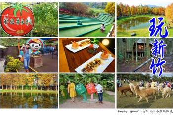 新竹關西一日遊 新竹放假這樣玩!一條路線攻略6個美拍景點和住宿分享!