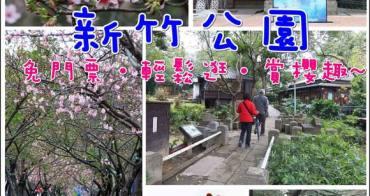 ▋遊記▋新竹免費景點!感受濃濃日本味,每年都會花開爆炸的河津櫻花步道,就在新竹公園裡!!(新竹一日遊)可以搭配玻璃工藝博物館、假日花市、新竹動物園半日遊。