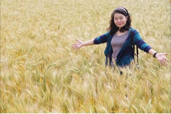 ▌遊記▌台版歐洲麥田風情畫,金色麥浪襲來! 台中大雅小麥產業文化節(驫麥趣)。