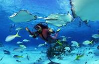Furaveri_underwater 2