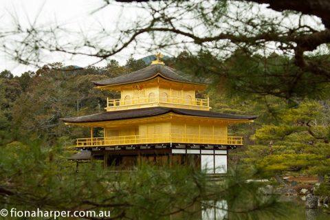 Golden pagoda, Kyoto
