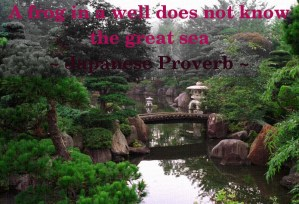 A frog in a well does not know the great sea - Japanese Proverb