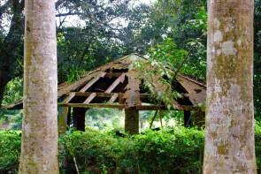 Aburi Botanical Gardens Pavillion