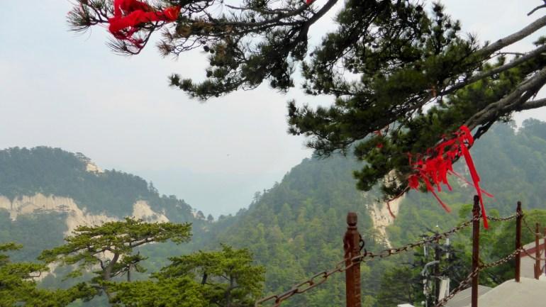 נופי ההר מבצבצים מבעד לעצים (צילום: שלי ברנשטיין)